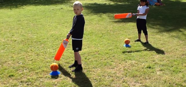 All Stars Cricket Opportunity